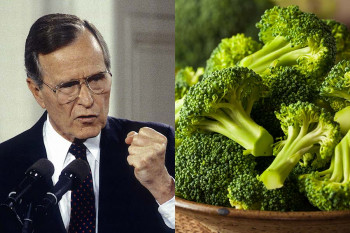 Bush vs. Broccoli