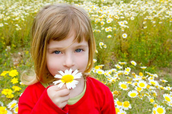 A little girl smells a flower with her nose