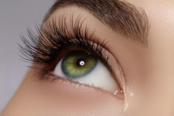 Long eyelashes need to be kept clean to avoid lice and mites.