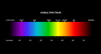 The visible spectrum, plus ultraviolet and infrared light