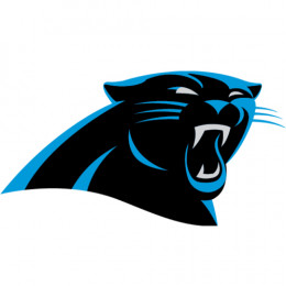 Carolina Panthers | CEENTA Partner