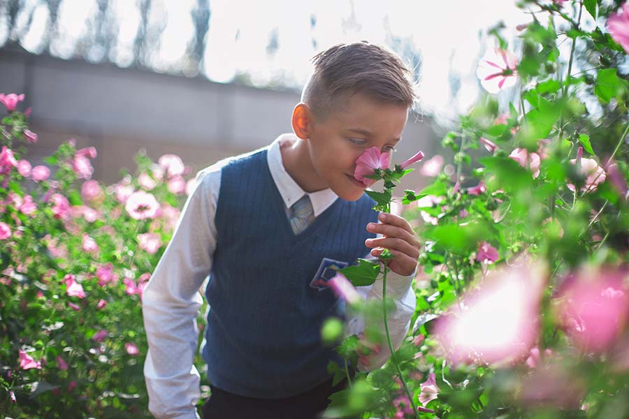 A boy smells flowers. He doesn't have allegies.